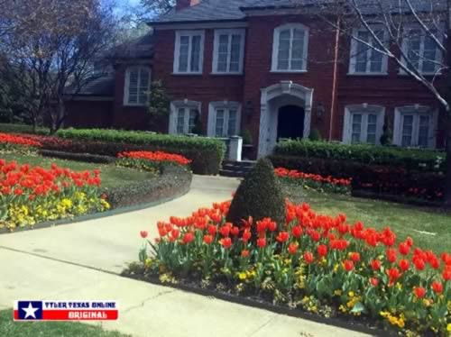 Photo along the Tyler Texas Azalea Trails on March 6, 2016