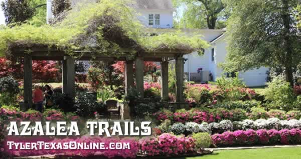 61st Annual Azalea & Spring Flower Trail will be held on March 20 - April 5, 2020