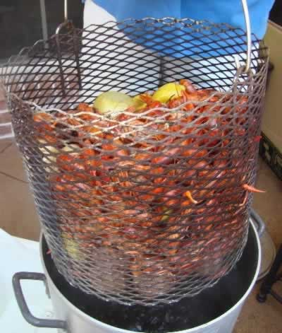 Boiled, red crawfish, fresh out of the boiling pot