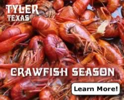 Crawfish season in Texas ... click to learn more!