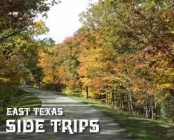 Side trips ... from Tyler Texas